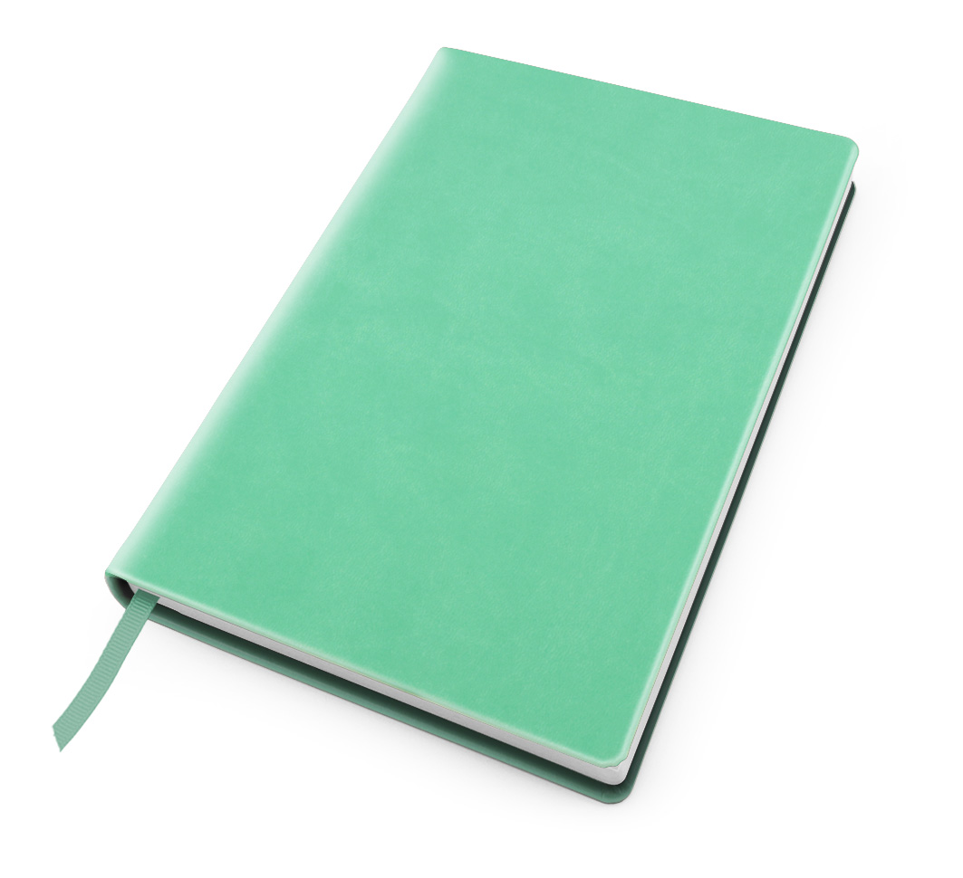Cesca A5 Dot Book in Peppermint